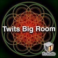 Twits Big Room [Redux]