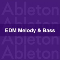 Edm melody & Bass project