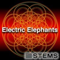 Electric Elephants STEMS