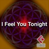 I Feel You Tonight