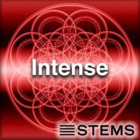 Intense - STEMS
