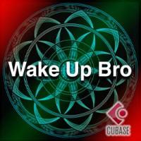 Wake up bro