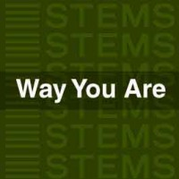 Way You Are STEMS