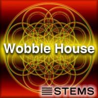 WobbleHouseSTEMS+Mstering