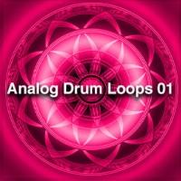 Analog Drum Loops 01