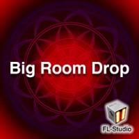Big Room House Drop