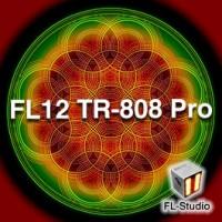 FL12 TR-808 Pro