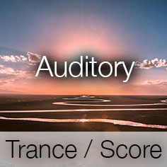 Auditory Music Banner